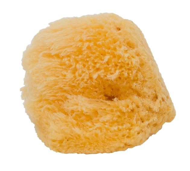 MEHRON Natural Sea Sponge