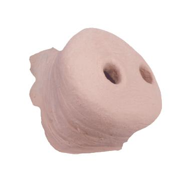 TIGA-D Pig Nose small