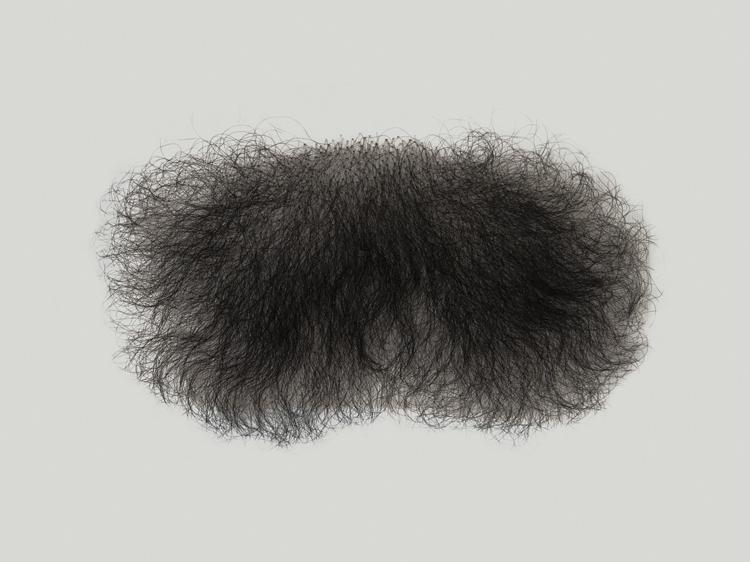 ATB Pubic Hair P2, male shape